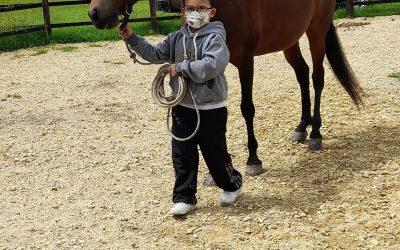 Beneficios de la equitación